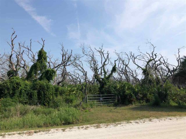 6518 Old A1a N, Palm Coast, FL 32137 (MLS #187768) :: Noah Bailey Real Estate Group