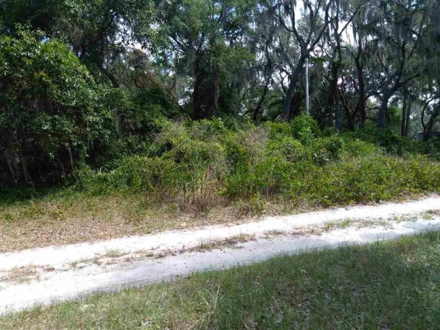 136 Faye St, Hawthorne, FL 32640 (MLS #187822) :: Tyree Tobler | RE/MAX Leading Edge