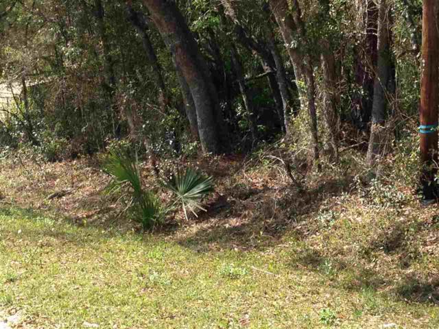 212 Squirrel Tree Tr, Satsuma, FL 32189 (MLS #188328) :: Memory Hopkins Real Estate