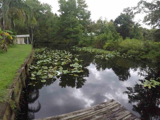 117 Park Drive, Satsuma, FL 32189 (MLS #188860) :: Tyree Tobler   RE/MAX Leading Edge