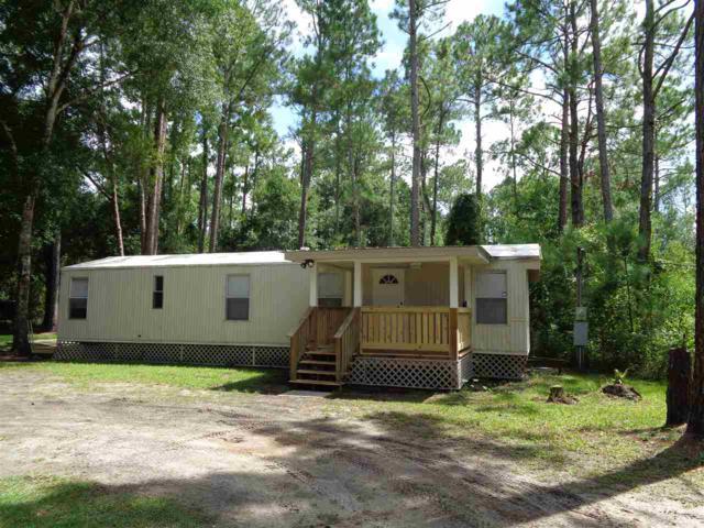 4445 State Road 206, Elkton, FL 32033 (MLS #189126) :: Tyree Tobler | RE/MAX Leading Edge