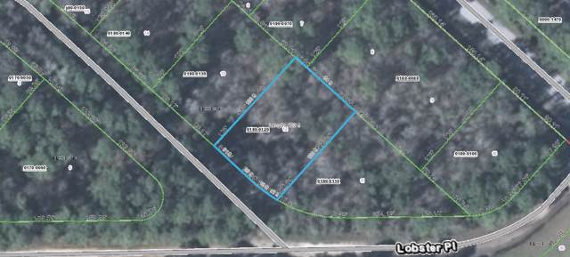 112 Donald R Blvd, Palatka, FL 32177 (MLS #190043) :: 97Park