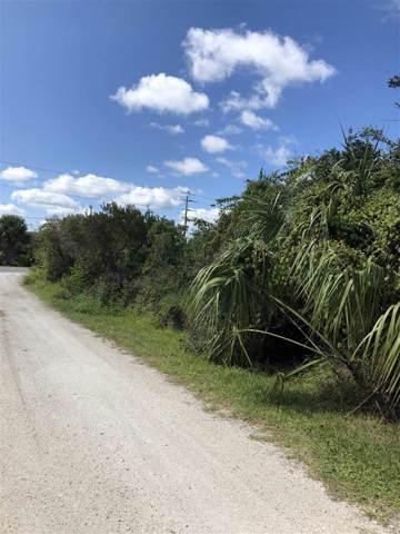 50 Milliken Ln, St Augustine, FL 32080 (MLS #190464) :: 97Park