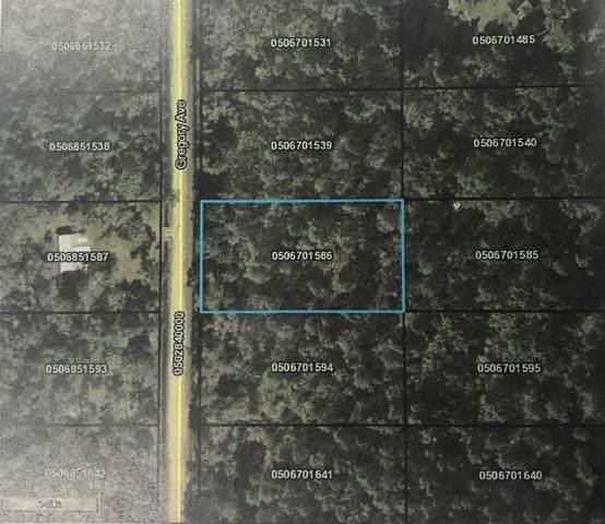 10630 Gregory Avenue, Hastings, FL 32145 (MLS #191334) :: 97Park