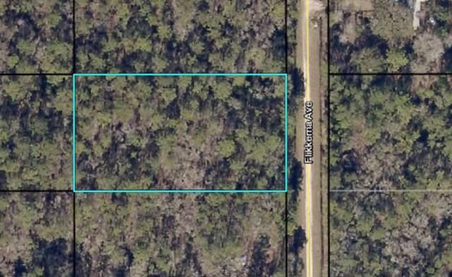 10445 Flikkema Avenue, Hastings, FL 32145 (MLS #192529) :: Bridge City Real Estate Co.