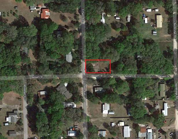 3325 S Palm Avenue, Palatka, FL 32177 (MLS #192532) :: 97Park