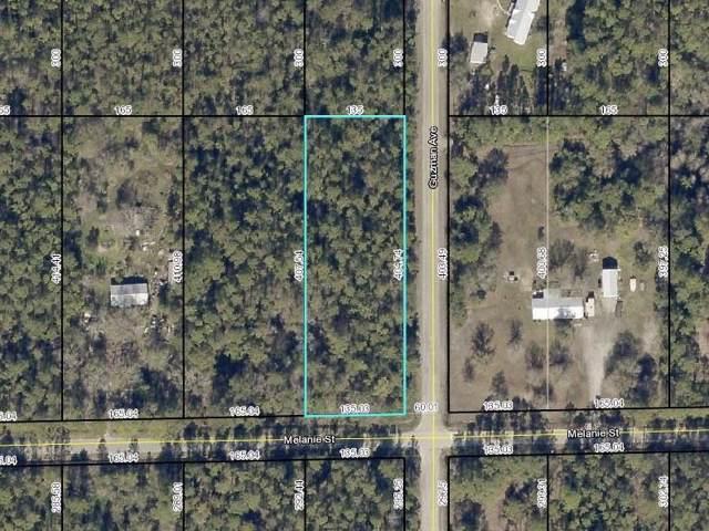 4300 Melanie St, Hastings, FL 32145 (MLS #192720) :: Bridge City Real Estate Co.