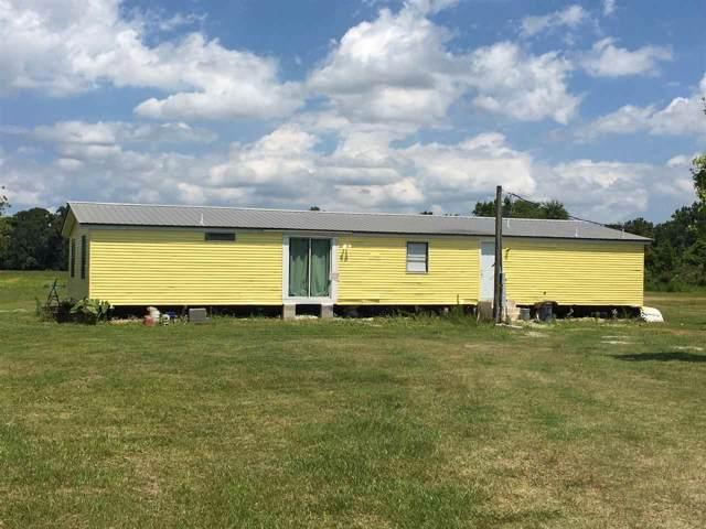 670 George Miller Rd, Hastings, FL 32145 (MLS #193104) :: Memory Hopkins Real Estate