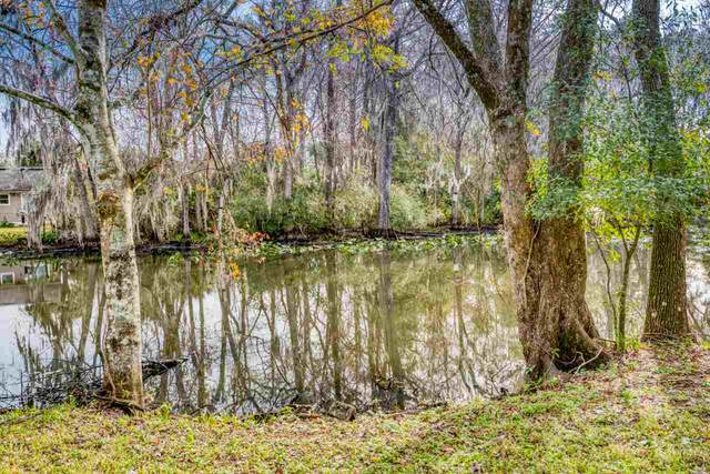 0 Sanchez Rd, Jacksonville, FL 32217 (MLS #193184) :: Memory Hopkins Real Estate
