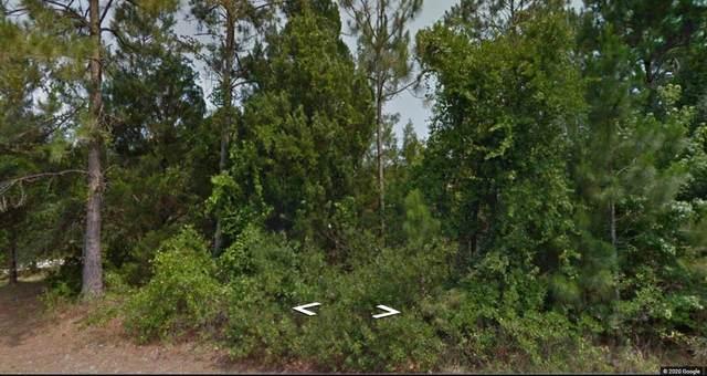 46 Woodbury Drive, Palm Coast, FL 32164 (MLS #193251) :: Bridge City Real Estate Co.