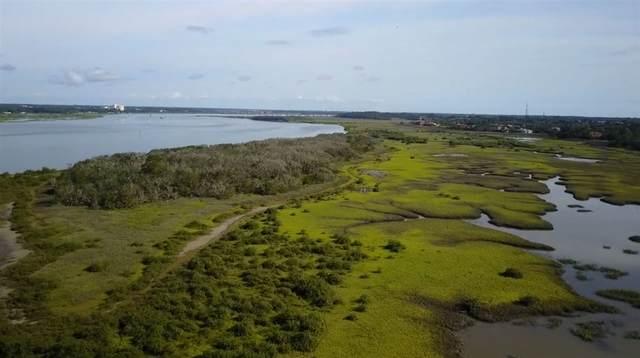 Hawkins Island, St Augustine, FL 32080 (MLS #193441) :: The DJ & Lindsey Team