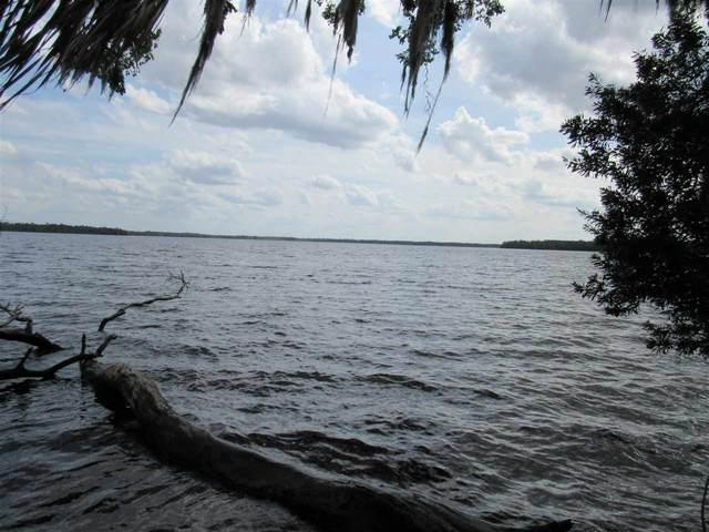 0 Unassigned Location, Welaka, FL 32193 (MLS #193987) :: Memory Hopkins Real Estate