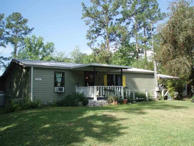 707 Carlin Rd, Satsuma, FL 32189 (MLS #194560) :: The DJ & Lindsey Team