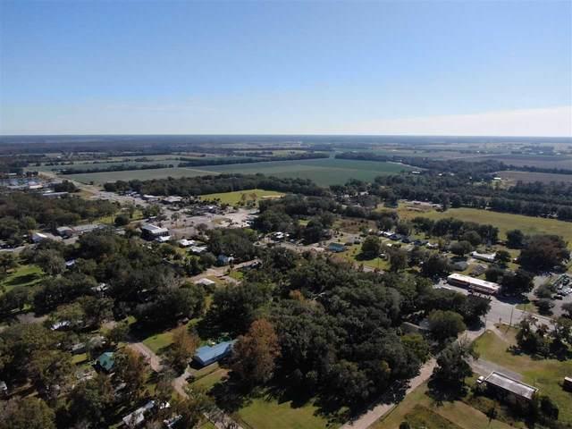 0 Register Burrell Rd, Hastings, FL 32145 (MLS #195283) :: 97Park