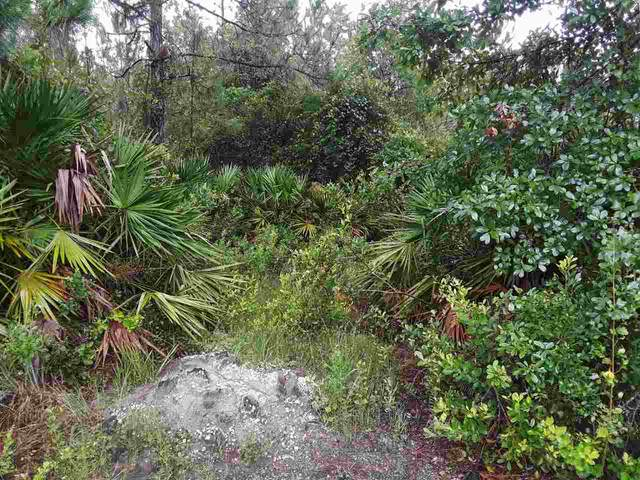 10685 Erickson Ave., Hastings, FL 32145 (MLS #195649) :: Bridge City Real Estate Co.