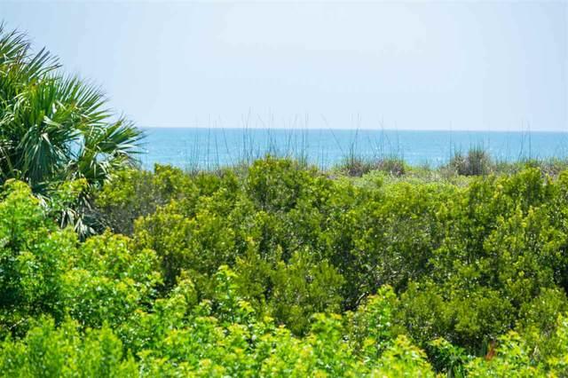 108 Premiere Vista Way, St Augustine, FL 32080 (MLS #196144) :: MavRealty