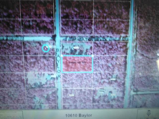 10610 Baylor Avenue, Hastings, FL 32145 (MLS #196504) :: 97Park