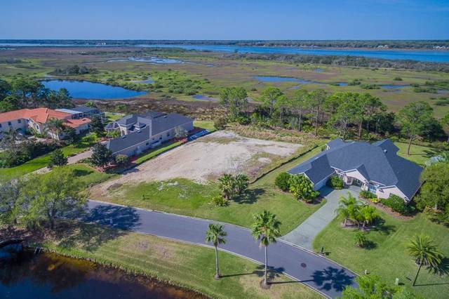 162 Herons Nest Ln, St Augustine, FL 32080 (MLS #196629) :: The Newcomer Group