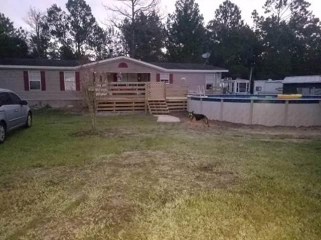 4420 Olga Street, Hastings, FL 32145 (MLS #197303) :: Memory Hopkins Real Estate