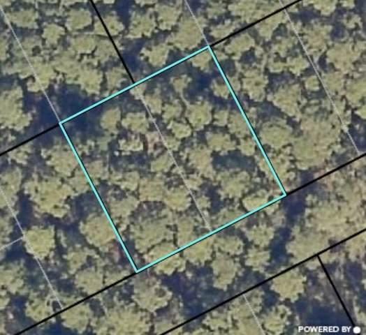 3428 7TH STREET, Elkton, FL 32033 (MLS #197526) :: Memory Hopkins Real Estate