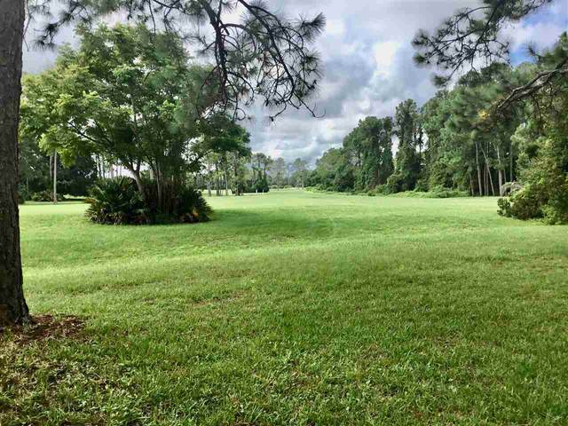 524 Domenico Ave, St Augustine, FL 32086 (MLS #198166) :: The Newcomer Group