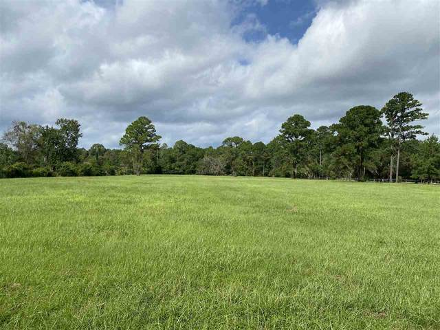2515 Pellicer Rd, St Augustine, FL 32092 (MLS #198369) :: Keller Williams Realty Atlantic Partners St. Augustine