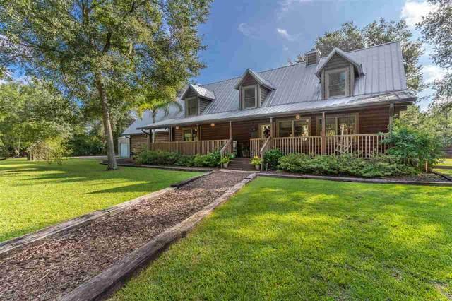 99 Wild Cat Trail, St Augustine, FL 32086 (MLS #198540) :: Century 21 St Augustine Properties