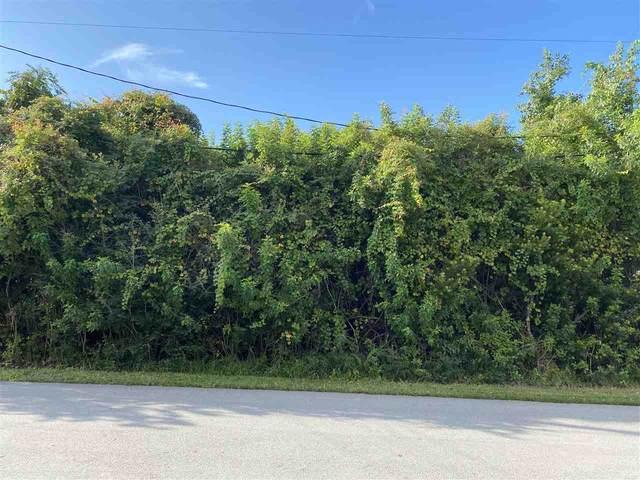 243 Trade Wind Lane, St Augustine, FL 32080 (MLS #198626) :: Memory Hopkins Real Estate