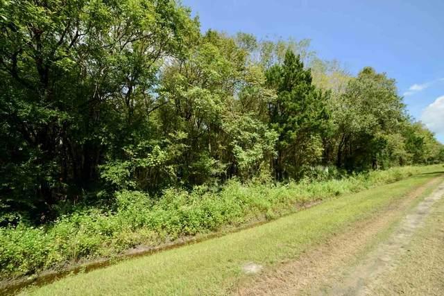 4570 Harold St, Hastings, FL 32145 (MLS #198903) :: Keller Williams Realty Atlantic Partners St. Augustine