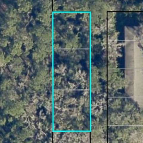 0 W Harris St, Hastings, FL 32145 (MLS #199639) :: The Impact Group with Momentum Realty