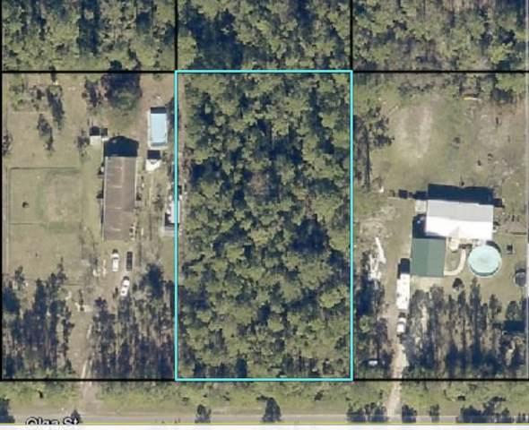 4430 Olga St, Hastings, FL 32145 (MLS #199648) :: Better Homes & Gardens Real Estate Thomas Group