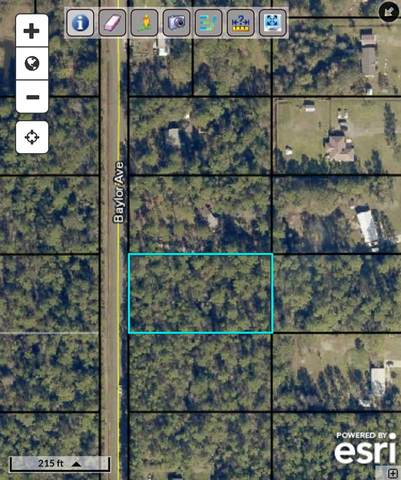 9730 Baylor Ave, Hastings, FL 32145 (MLS #199736) :: The Impact Group with Momentum Realty