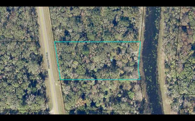 10640 W Deep Creek Blvd, Hastings, FL 32145 (MLS #199955) :: The Impact Group with Momentum Realty