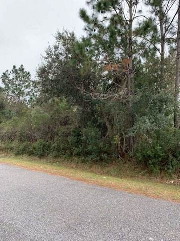11 Buttonwood Lane, Palm Coast, FL 32137 (MLS #210200) :: The Impact Group with Momentum Realty