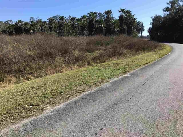 Dancy Ave, Hastings, FL 32145 (MLS #210306) :: 97Park