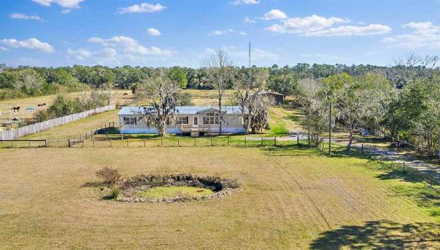 9710 Luther Beck Road, Hastings, FL 32145 (MLS #210391) :: Noah Bailey Group