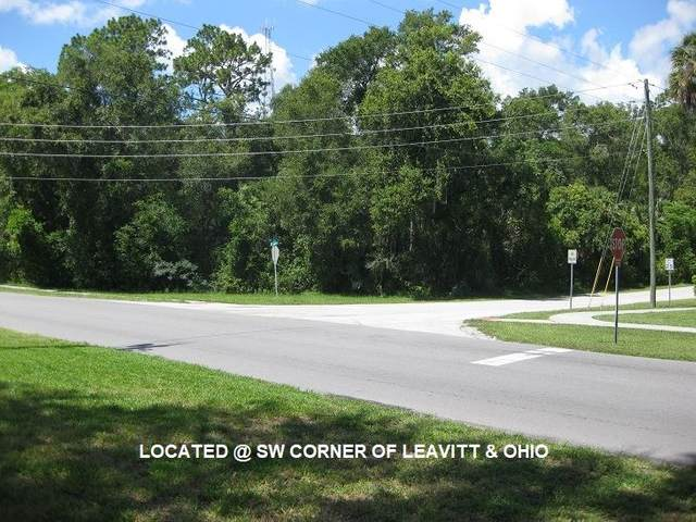 E Ohio Ave, Deltona, FL 32763 (MLS #211469) :: CrossView Realty