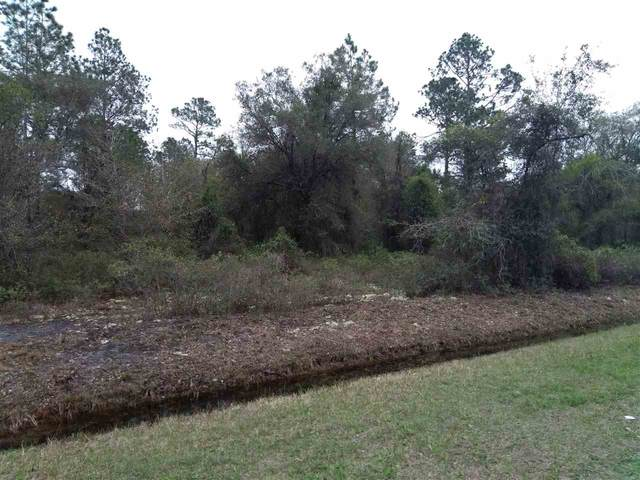 10010 Weatherby Ave, Hastings, FL 32145 (MLS #211484) :: The Newcomer Group