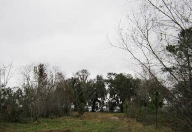 0000 School Lane, East Palatka, FL 32131 (MLS #211931) :: Olde Florida Realty Group