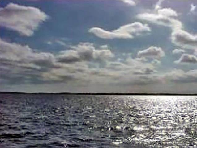 900 River Mist Bend, Palatka, FL 32177 (MLS #211959) :: The Perfect Place Team