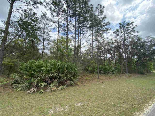 0 Theresa Ave., Interlachen, FL 32148 (MLS #212181) :: The Perfect Place Team