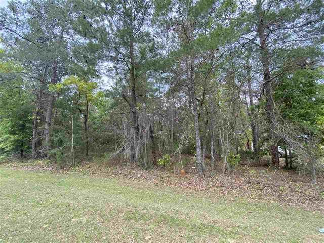 00 Theresa Ave., Interlachen, FL 32148 (MLS #212182) :: The Perfect Place Team