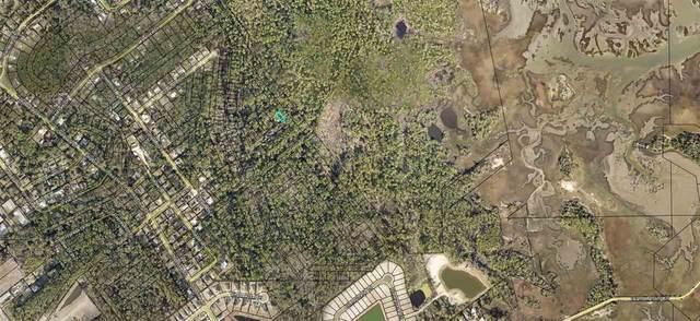 6225 E Magnolia Dr, St Augustine, FL 32095 (MLS #213262) :: Memory Hopkins Real Estate