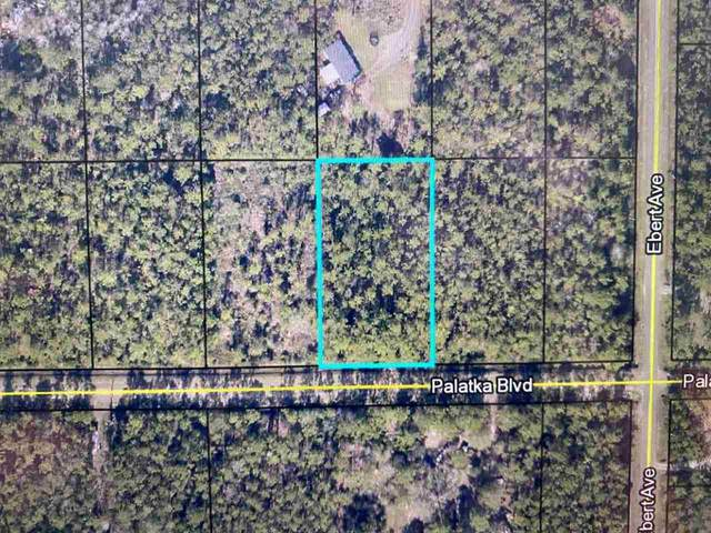 4220 Palatka Blvd, Hastings, FL 32145 (MLS #213409) :: Bridge City Real Estate Co.