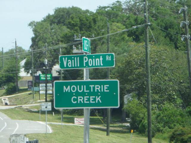 100 E Genung St, St Augustine, FL 32086 (MLS #213447) :: Keller Williams Realty Atlantic Partners St. Augustine