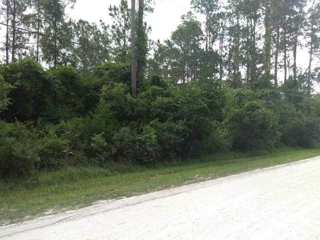 1557 Hickory St, Bunnell, FL 32110 (MLS #214028) :: The Perfect Place Team