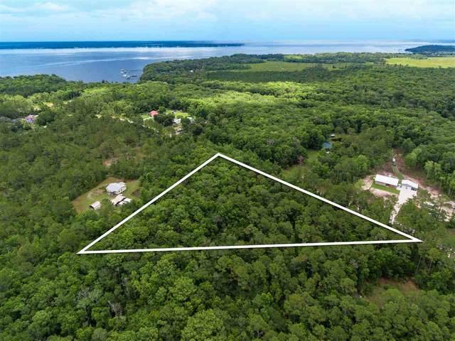 181 Pioneer Trl, Green Cove Springs, FL 32043 (MLS #214177) :: Noah Bailey Group