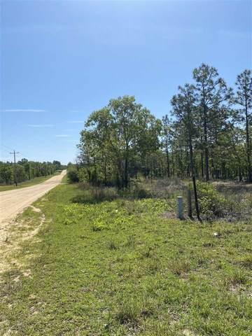 2105 & 2107 Main Street, Hawthorne, FL 32640 (MLS #214223) :: Better Homes & Gardens Real Estate Thomas Group