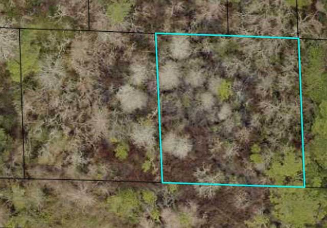 0 W West 14th Street/Lots 20 And 21, St Augustine, FL 32084 (MLS #214328) :: 97Park