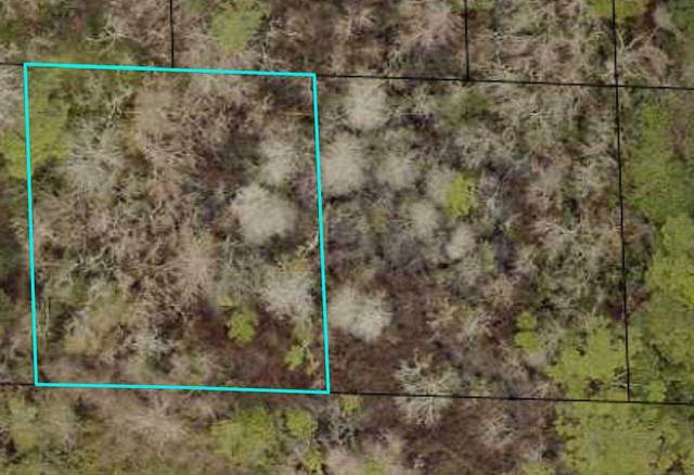 0 W West 14th Street Lots 18 And 19, St Augustine, FL 32084 (MLS #214329) :: 97Park